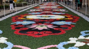 Flower Carpet Fiesta